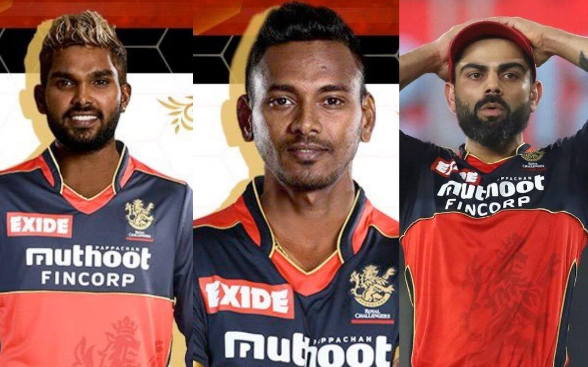 Cricket Image for 'हसरंगा और चमीरा के लिए आईपीएल  का रास्ता नहीं हुआ साफ', RCB को पड़ सकते हैं लेने