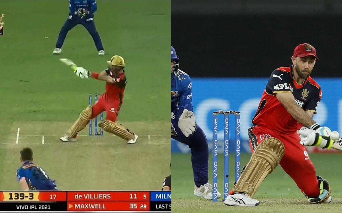 Cricket Image for VIDEO : क्या पेसर्स और क्या स्पिनर, मैक्सवेल ने सभी को दिखाए दिन में तारे