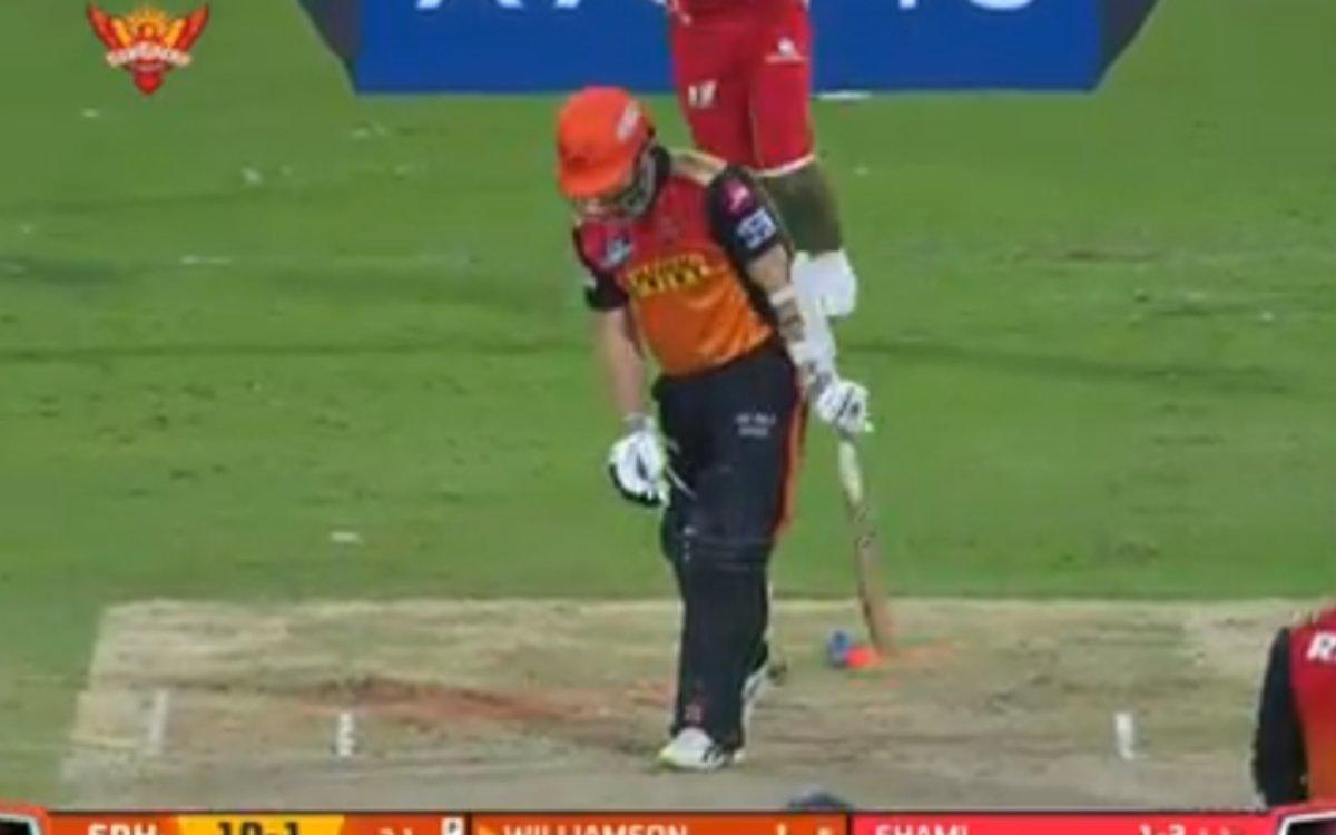 Cricket Image for VIDEO : शमी की रफ्तार ने उखाड़ी विलियमसन की स्टंप्स, पहले तीन ओवरों में ही हार गई