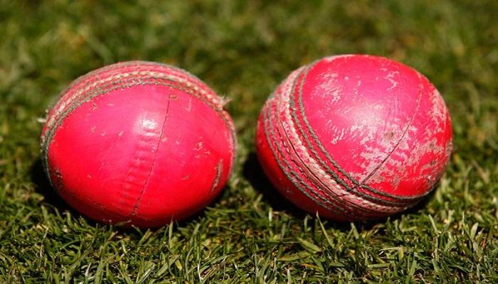 भारत की टीम न्यूजीलैंड के खिलाफ डे- नाइट टेस्ट मैच खेलेगा